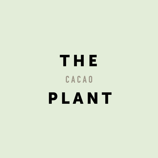 Chocolate-Codex-Legacy-About-Cacao-Thumb_01