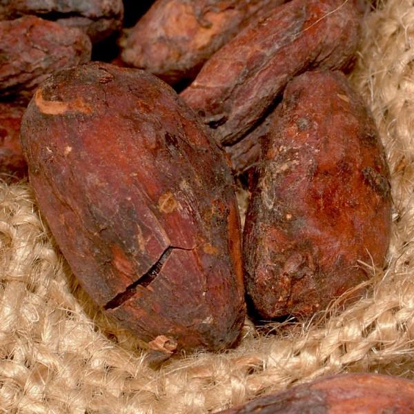 Chocolate_Codex_Same_Country_Farm_to_Bar
